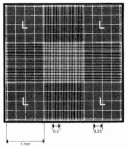 Камера подсчета с сеткой Нейбауэра, светящиеся линии