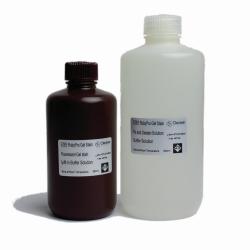 Наборы для окрашивания протеиновым гелем