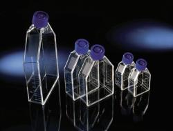 Культуральные колбы EasYFlask™, Обработанные, полистирол/полиэтилен высокой плотности, стерильные, 70 мл, Фильтр