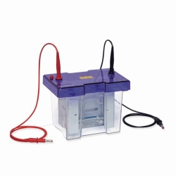 Система гель электрофореза omniPAGE TETRAD Mini-Set